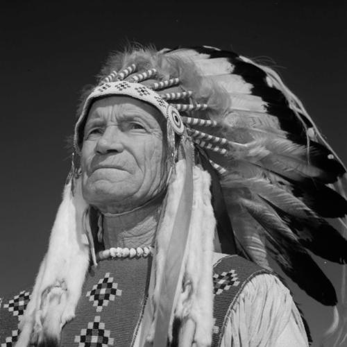 Pionnier autochtone