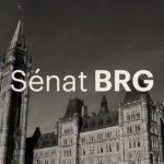 Un second examen objectif encore plus présent au Sénat