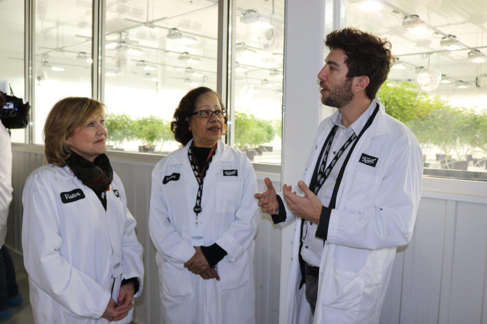 Des sénateurs visitent un établissement de production de cannabis autorisé